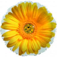 Шар (18''/46 см) Круг, Цветок, Гербера, Желтый, 1 шт.